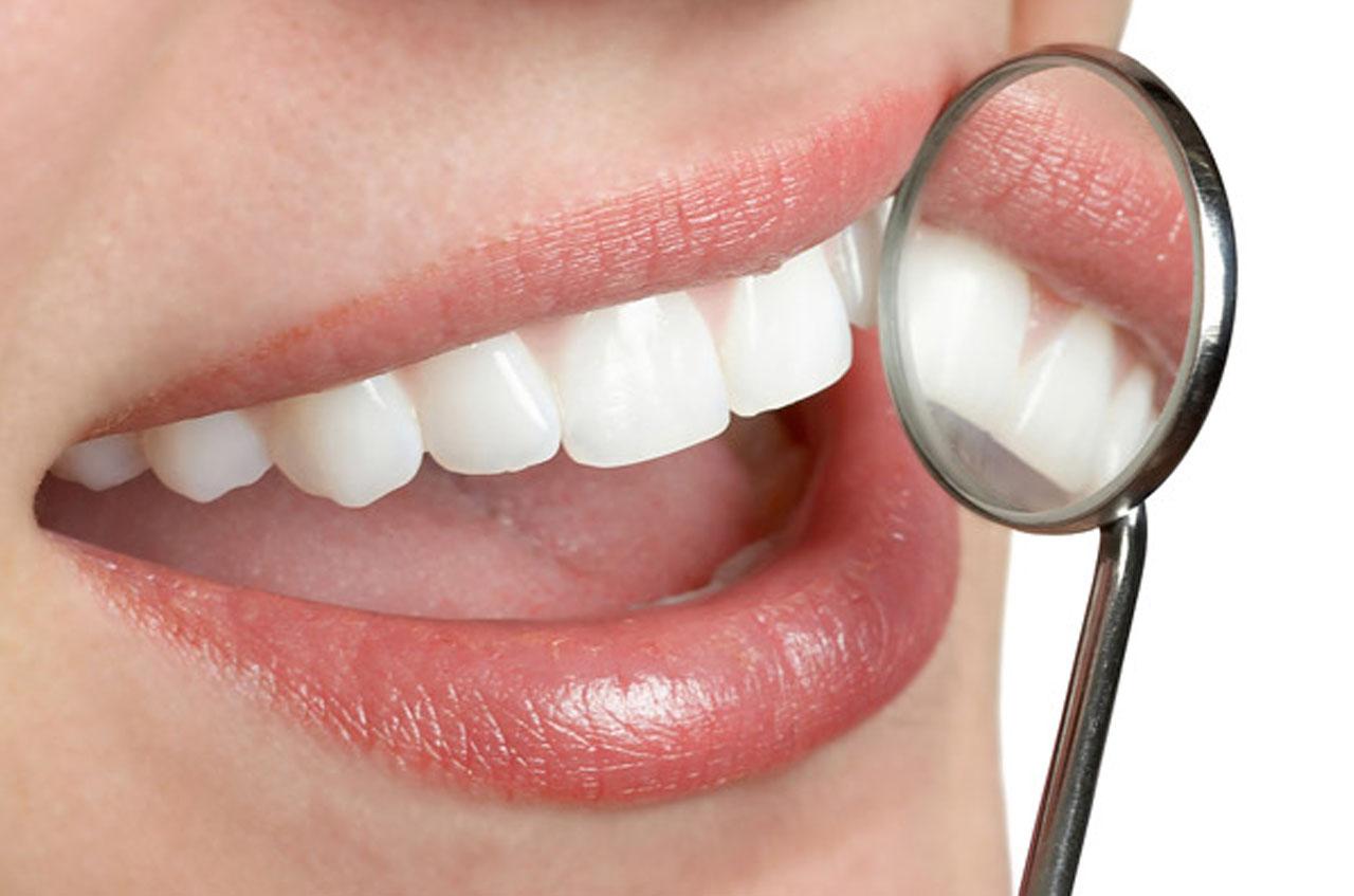 dentist in westmead