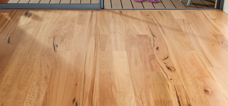 Top 4 Reasons Why You Should Opt For Timber Flooring As Styling For Your House