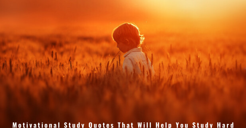 Motivational Study Quotes That Will Help You Study Hard