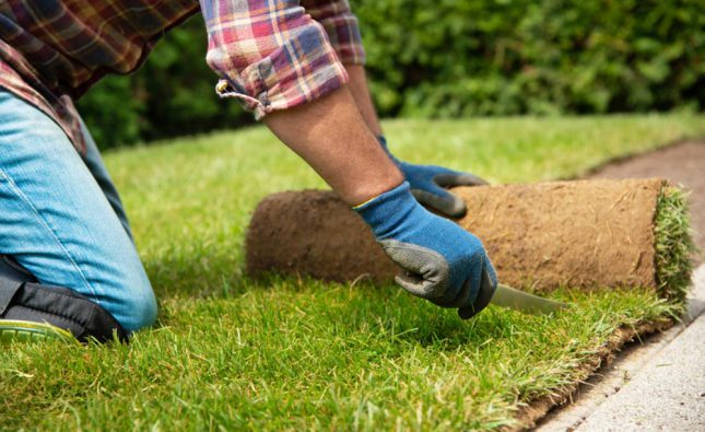 Apply These 5 Secret Techniques To Improve Turf Laying