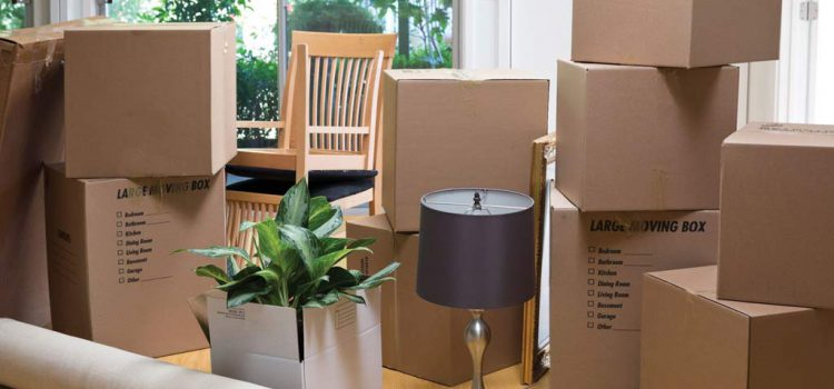 How to choose the best Furniture Removal Company?