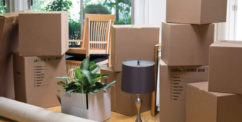 furniture removals hornsby