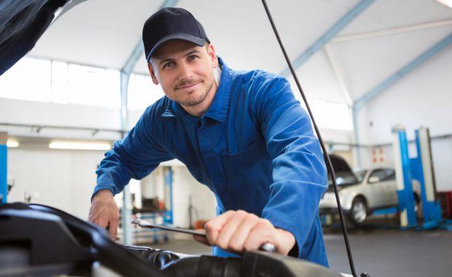 european car mechanic curl curl
