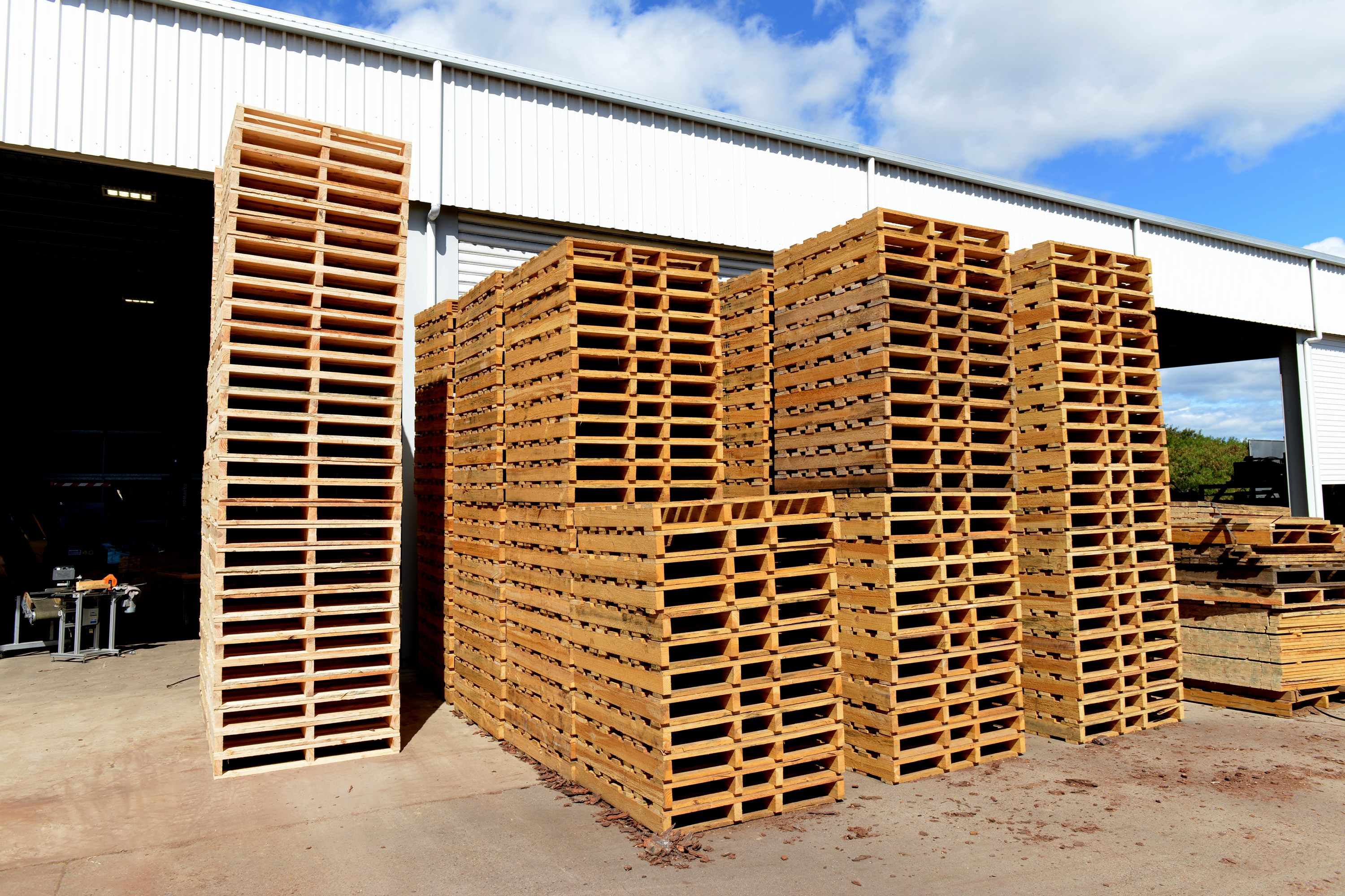 6 Useful Tips To Select The Best Wood Pallet Company